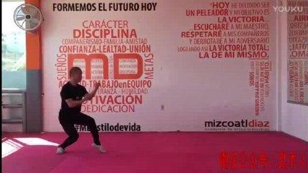墨西哥武术爱好者演练的少林通背拳, 好像跟传统通背拳不一样!
