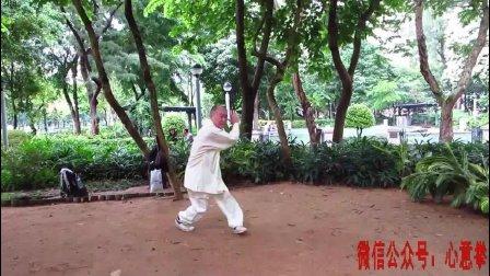 心意六合拳传人唐路得先生在香港公园授拳实拍, 看看功夫如何?