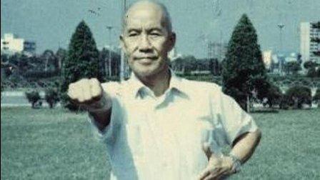 陈发科师弟杜毓泽先生演练的陈氏太极拳老架, 最接近原始的陈氏太极拳! 来看看吧