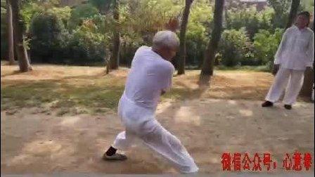 79岁老拳师演练上海心意六合拳视频, 真不简单!