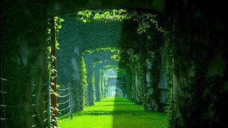 美哭了! 成都二环路高架桥穿上绿衣裳, 绿色桥墩很养眼!