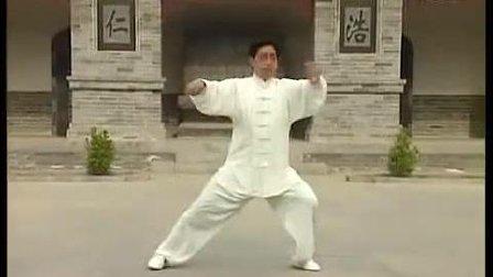 陈氏太极拳大师陈小旺弟弟陈小星演练的太极拳视频, 这功夫怎样?