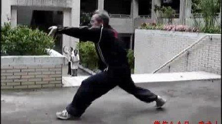 台湾形意拳传人演练的一段形意崩拳, 看看练的跟大陆传承的有区别吗?