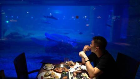 市中心居然有家这么大的海底世界餐吧