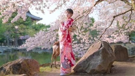 日本女人喜欢穿和服, 讲真, 和服确实很好看
