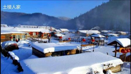 降央卓玛 - 我爱你塞北的雪