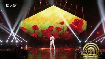 央视[精彩音乐汇]《九百九十九朵玫瑰》 演唱: 邰正宵