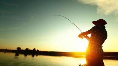 钓虾场钓到大鲤鱼