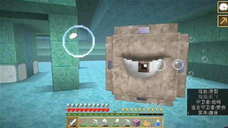 我的世界Minecraft《生存模式》