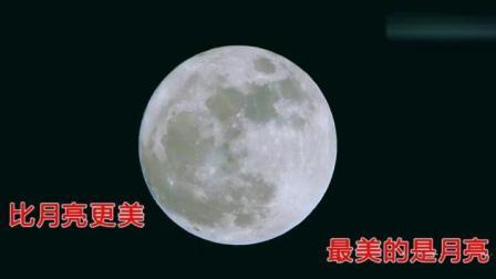 一首抒发游子思念之情的歌曲《望月》演唱 感悟人生