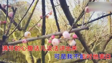 前苏联电影《幸福的生活》插曲《红梅花儿开》演唱 感悟人生