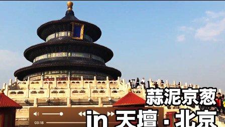 【京葱】第二次来天坛了依旧暴走2w步【2017北京第一天】