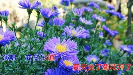 翻唱一首陈雅森的《我的快乐就是想你》你是我的最爱无人能代替