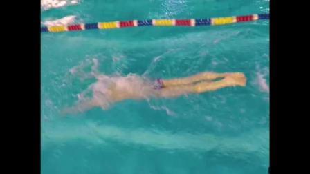 高级单臂蝶游泳方法与手部动作