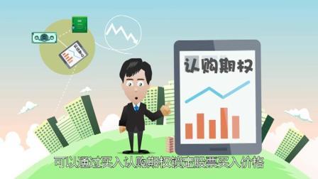 个股期权ABC(20集全): 股票期权对投资者的用途12