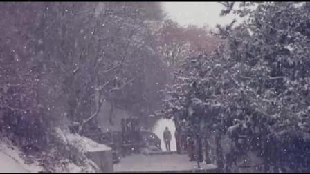 一首非常好听的怀旧金曲《飘雪》述说感人故事 珍贵回忆