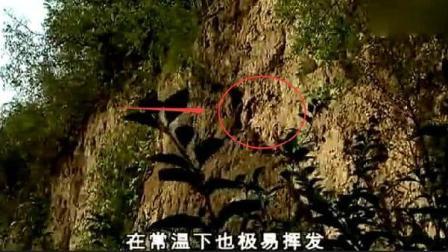 秦始皇陵里面的一百吨水银, 原来都是从这里流进去的