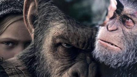 四分钟解析《猩球崛起3》血和泪的终极之战