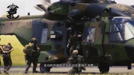 中国突击营救演习, 德军出动NH90直升机助阵, 美又保持沉默