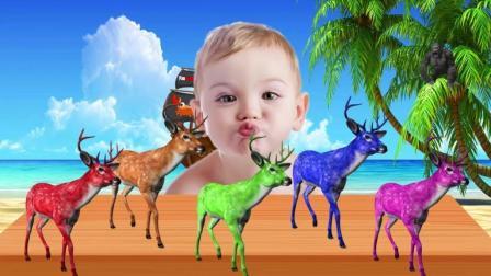 早教益智启蒙色彩英文动画: 大猩猩拿走宝宝的小鹿玩具, 宝宝很伤心