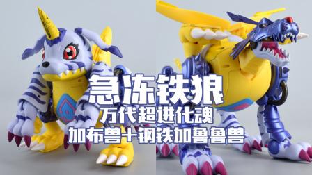 【评头论足】急冻铁狼! 万代 数码宝贝 超进化魂 加布兽+钢铁加鲁鲁兽