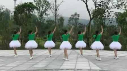 有分解动作的广广场舞 慢动作广场舞