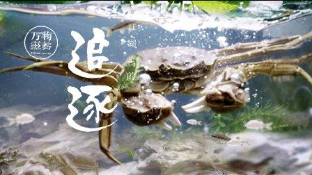 第5集 江湖里的追逐