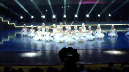 鹅 芭蕾舞 2018凤舞重歌少儿春晚节目
