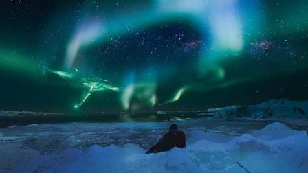 好剧推荐之《南极之恋》: 一场南极的绝地求生, 两个普通人谈一次不普通的恋爱