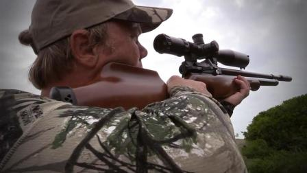 獵奇 第一百三十六集 非洲农场野鸽清洁工