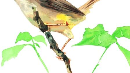 国画兰草初学者 中国画人物技法 画家创作经验