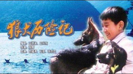 老电影【狼犬历险记】(1985)主演 石荣 刘廷尧 叶琳琅 王心见