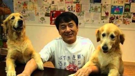 成龙看这2只狗狗的眼神 恰似蔡琴的一首歌