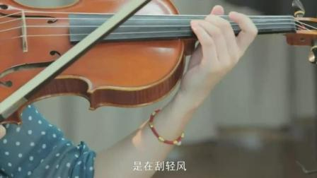 天籁小提琴视频宝典_小提琴视频教学_小提琴学习