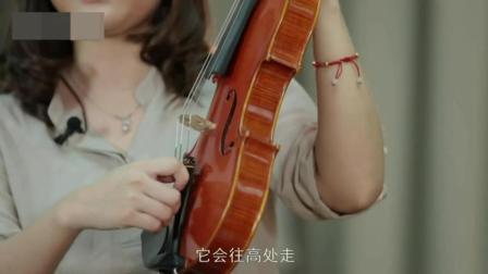 天籁小提琴视频宝典_小提琴入门自学视频教程_小提琴视频教程