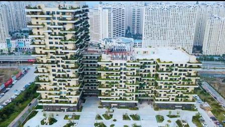 航拍碧桂园华东总部, 建筑外墙长满植物, 就像一个特色的景观, 让人赏心悦目!
