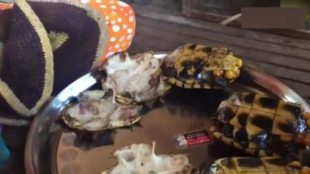 """【街头美食】厉害了 街头美食小吃""""烤海龟"""""""