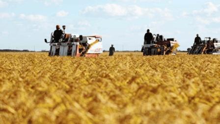 两个给农民的补贴, 刚刚敲定! 一个每亩500元, 一个每亩150元!