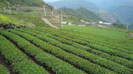 停工令刚解除, 农村3种行业宣布收费, 八成农民怕是都要受影响!