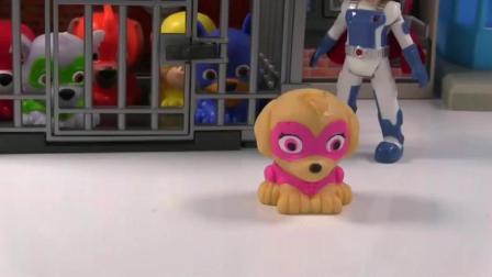 汪汪队立大功的小狗崽在警察局门口玩旋转器