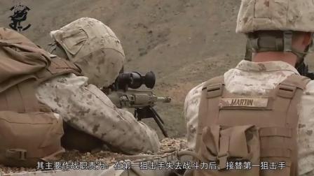 第二狙击手使用武器, 虽然价格低狙击, 但确是上万欧元突击步枪
