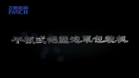 铝塑泡罩包装机演示视频