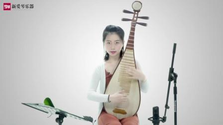 琵琶教程:琵琶的右手基本指法插图