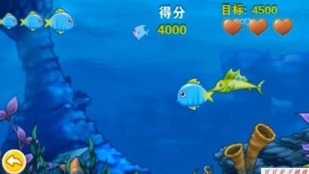 捕鱼达人之大鱼吃小鱼玩具动画视频