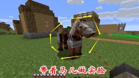 我的世界: 我带着马儿做了好几个实验