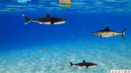 捕鱼达人之小鲨鱼成长记玩具动画视频