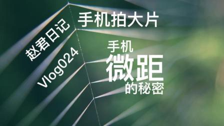 手机微距的秘密\手机拍大片\赵君日记Vlog024