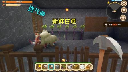 迷你世界: 这头牛肯定是土豪, 看他吃得饱住得好, 作为主人很欣慰