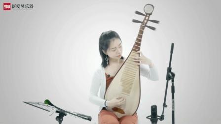 琵琶教程:D调七声音阶摸进练习(一)插图