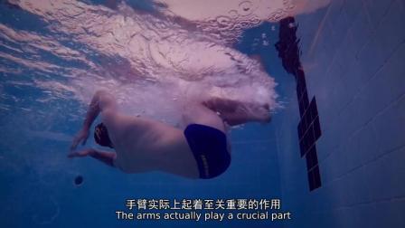 初学者如何做自由泳转身